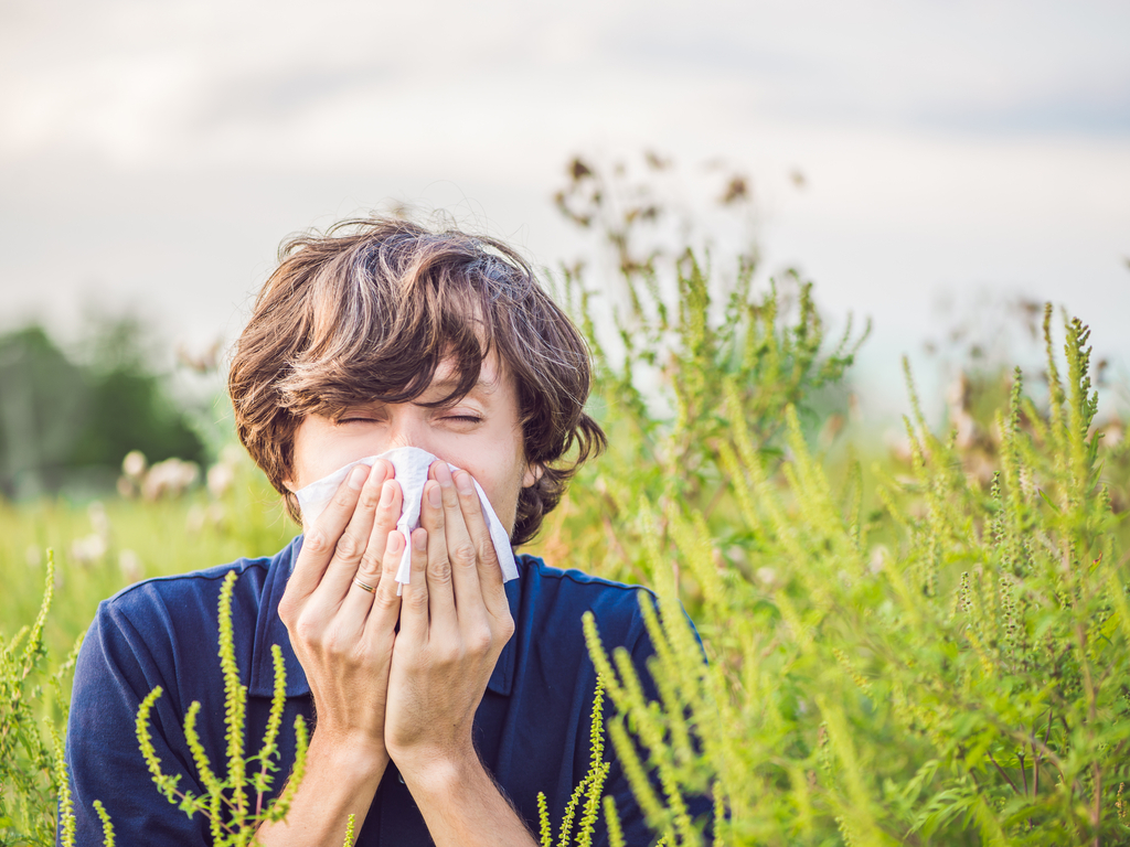 אלרגיה-עונתית-ששש